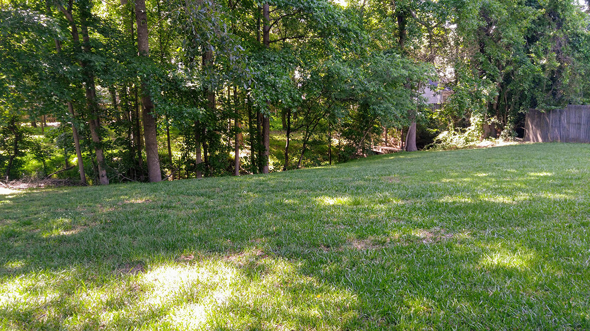 Homes for sale in Fuquay Renee Hillman Hillman Real Estate Group