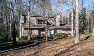 Raleigh homes for sale - Renee Hillman